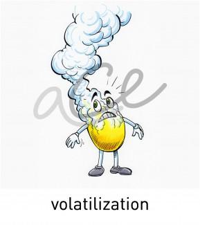 volatalization